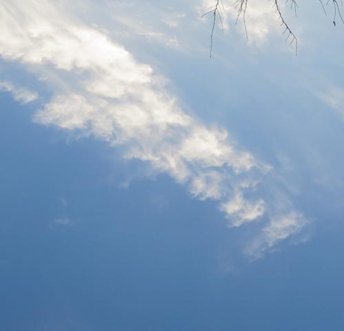 雲の顔.png