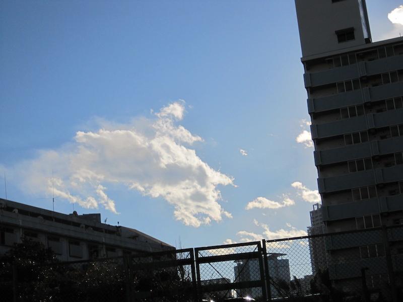 雲の馬.jpg